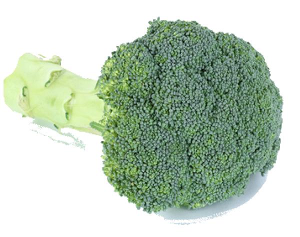 Brokkoli - Start Essen auf Rädern